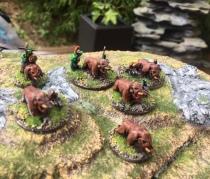 war boars